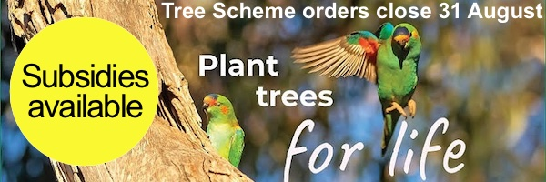 NRMjobs Notice 20005988 - Trees For Life - SA Tree Scheme closes soon (subsidies available)